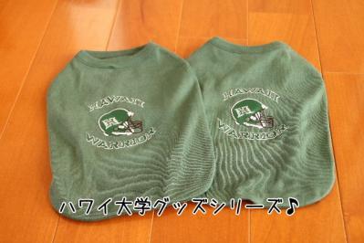 2011_10_08_9999.jpg