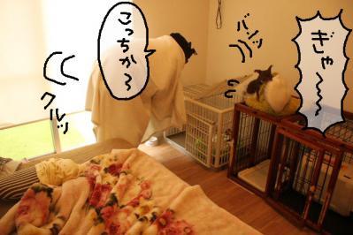 2011_10_15_9999_14.jpg