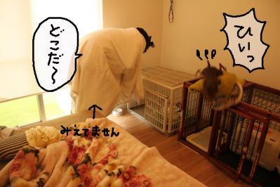 2011_10_15_9999_15.jpg