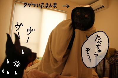 2011_10_15_9999_22.jpg