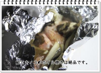 2011_10_22_9999_55.jpg