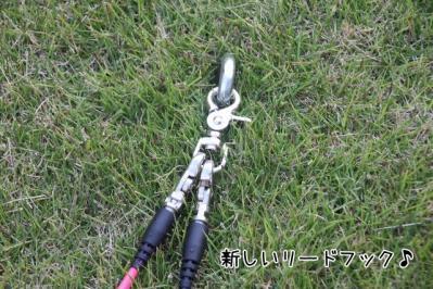 2011_11_20_9999_2.jpg