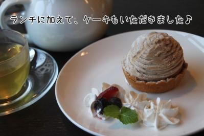 2011_11_23_9999_311.jpg