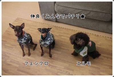 2011_11_23_9999_48.jpg