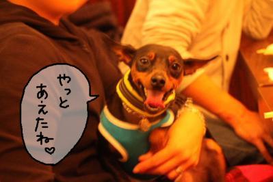2011_12_04_9999_187.jpg