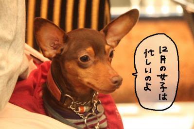 2011_12_04_9999_196.jpg