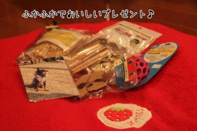 2011_12_04_9999_221.jpg