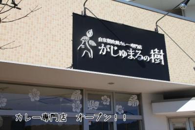 2011_12_04_9999.jpg