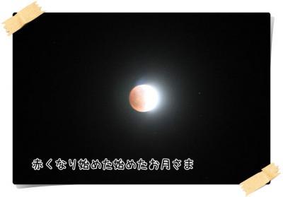 2011_12_10_9999_42.jpg