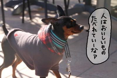 2011_12_24_9999_1.jpg