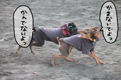 2011_12_24_9999_89.jpg