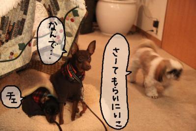 2012_01_01_9999_24.jpg