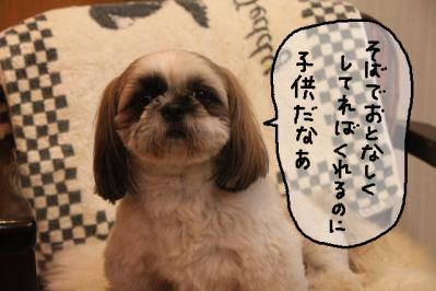2012_01_01_9999_25.jpg