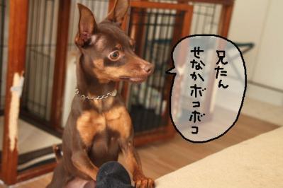 2012_01_06_9999_26.jpg