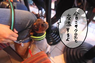 2012_01_29_9999_12.jpg