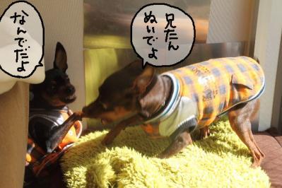 2012_01_30_9999_8.jpg