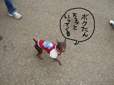 昭和記念公園1-2