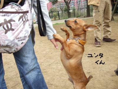昭和記念公園1-3