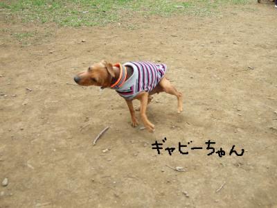 昭和記念公園1-4