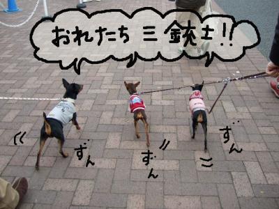 昭和記念公園1-11