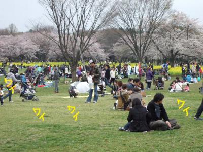 昭和記念公園1-15