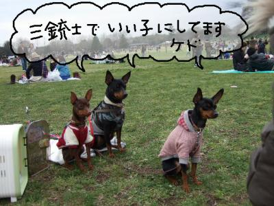 昭和記念公園2-1