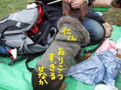 昭和記念公園2-2