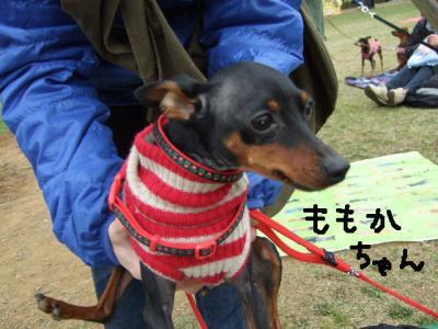 昭和記念公園2-5