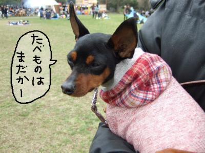 昭和記念公園2-6