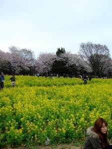 昭和記念公園2-8