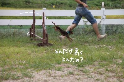 20100920-run7