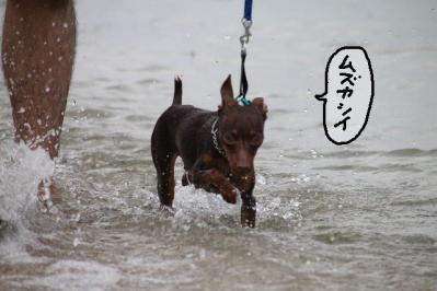 20100920-beach4