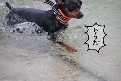 20100920-beach8