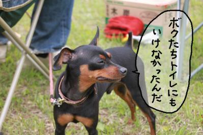 御殿場トライアル2