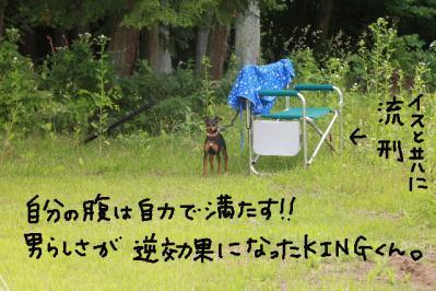 御殿場トライアル15