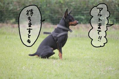 御殿場トライアル19