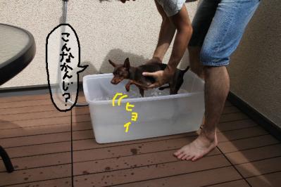 泳ぎ練習2
