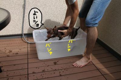 泳ぎ練習3