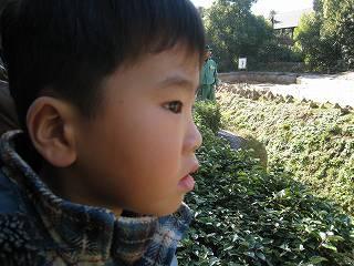 20081228_20.jpg
