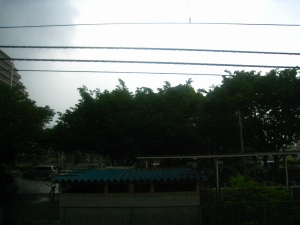 20090505_58.jpg