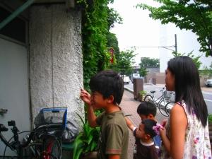 20090802_50.jpg