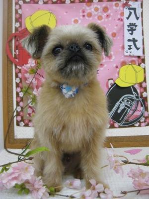 2010_0424_edhi.jpg