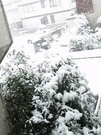 2012_0229_yuki3.jpg