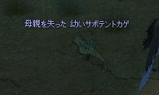 20060430071441.jpg