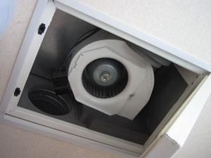 2003153.jpg