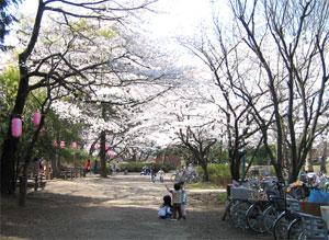 2004031.jpg