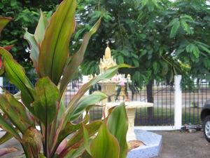 thai_0904.jpg