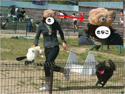 E.Tの帽子