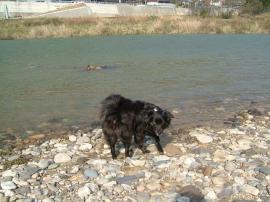 川で遊びます