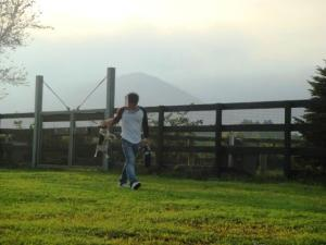 富士山へ124-1
